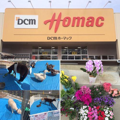 DCMホーマック大船渡店