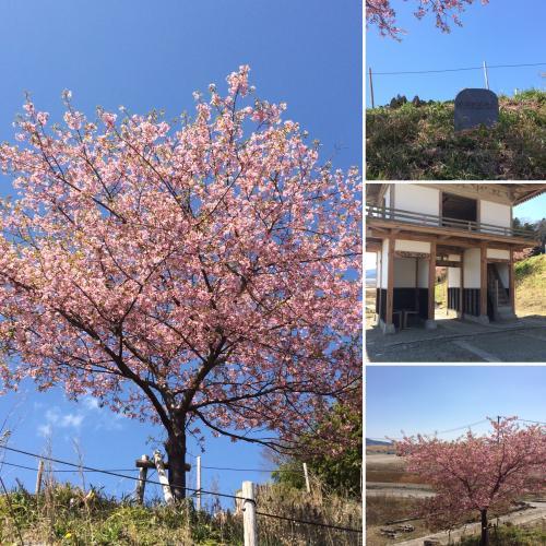桜ライン3.11 陸前高田市