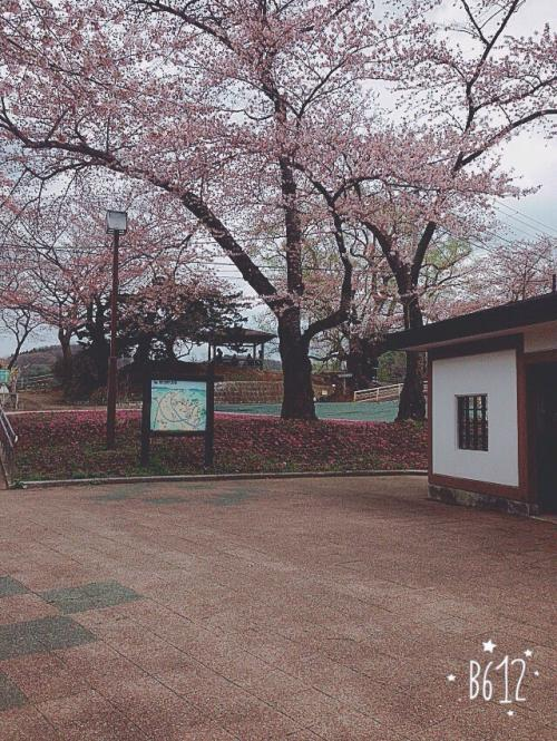 盛岡市高松の池